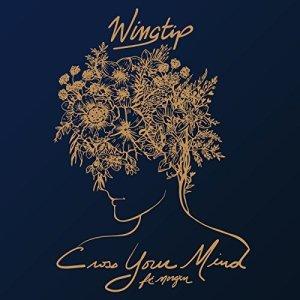 Wingtip - Cross Your Mind (ft. Morgxn)